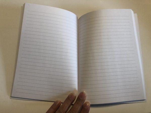 Carnet Mes idées Divines- pages intérieures